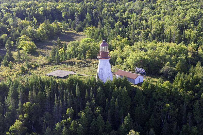 High angle view of traditional windmill amidst trees in forest