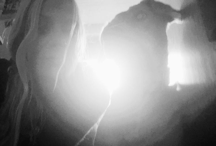 Glitch Sunlight Dog Selfie With My Dog Cute Pets EyeEm Animal Lover IPhoneography Blackandwhite
