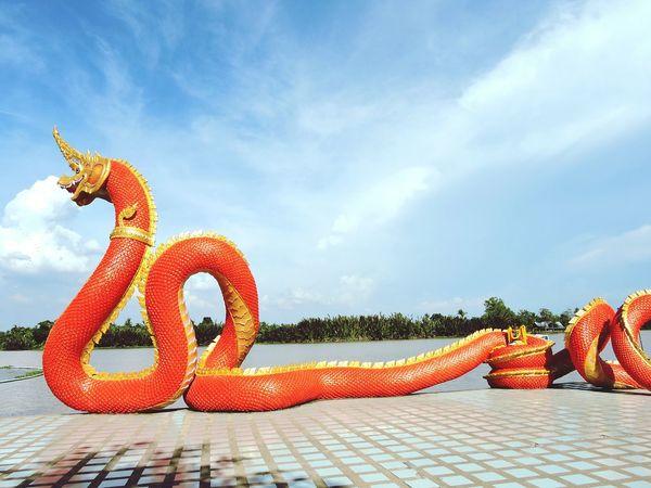 Serpent Stucco Stuccotexture Tourist Attraction
