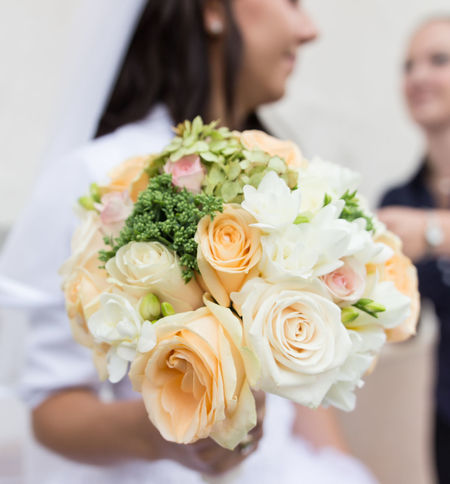 Close-up Day Flower Flower Head Focus On Foreground Freshness Rose - Flower Soft The Big Day Wadding