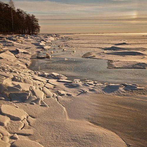 Winter Russia Finland_gulf Beach january holidays snow ice horizon