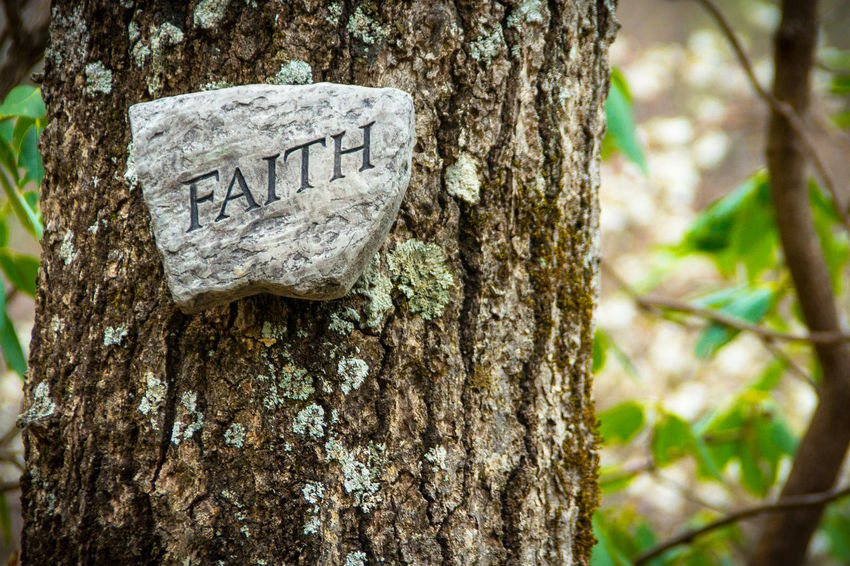 "A rock sign saying ""Faith"" on a tree trunk along a forest trail Catholicism Christian Christianity Depression Despair Devotion Encouragement Faithful Have Faith Heavenly Hopeless Hopelessness Inscription Lost In The Woods Prayer Prayers Religion And Beliefs Religions Religious Art Religious Icons Religious Place Reverence Sign From God Trail Marker Uplifting"