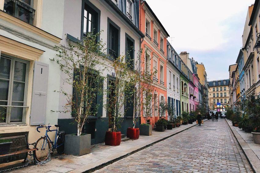 Paris Streets Of Paris Rue Crémieux Building Exterior Built Structure Architecture City Building Residential District Nature