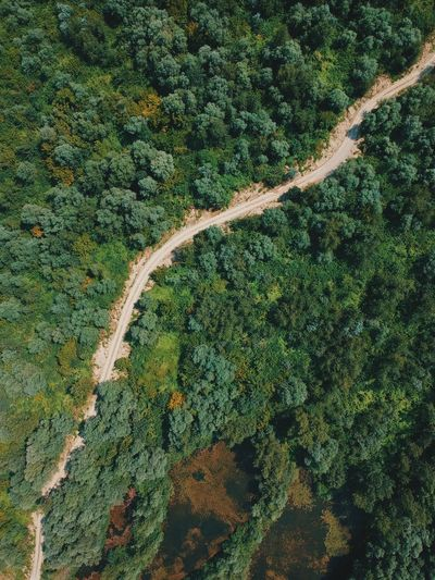 Aerial view at the road Forest Path Vertical Road DJI X Eyeem Aerial Green Color Plant Growth Full Frame No People Nature Day Beauty In Nature Tree High Angle View Tranquility Outdoors Backgrounds Land Landscape Tranquil Scene Environment Agriculture Pattern Field