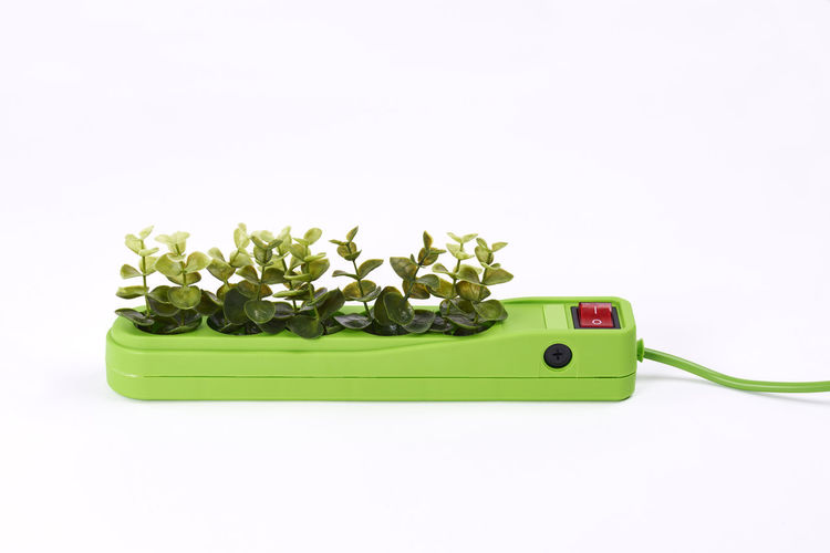 Electric socket with plants on white background Electric Socket Cut Out White Background Electric Plug Efficiency Energy Efficient Alternative Energy Energy Eco Ecology Concept Electrical Outlet Economy Electricity  Electrical Equipment Equipment Electronics Industry Renewables Power Supply Connection Flowing Lighting Equipment Environmental Conservation Environment Protection Care Plant Studio Shot Green Color
