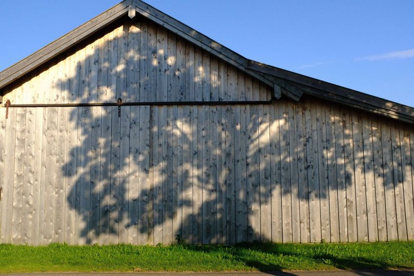 Barn Treeshadow Sky Architecture Nature Sunlight No People Sky Architecture Nature Sunlight No People Shadow Field Building Wall - Building Feature Low Angle View