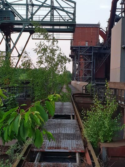 Landschaftspark Duisburg-Nord Travel Emptiness Rusty Metal Rust Abandoned Buildings Abandoned Places Iron And Steel Industry Iron And Steel Landschaftspark Duisburg-nord Copy Space City Marketing Sightseeing Spot Marketing Duisburg Industrial Photography Industrial Landscapes Metallurgical Plant Metallurgy Metal Grate Outside Photography In Front Centered Perspective Travel Destinations Tourism Lines And Shapes Tree Architecture Building Exterior Built Structure Tourist Attraction