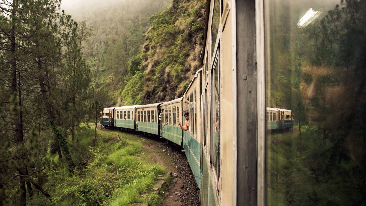transportation, train - vehicle, tree, railroad track, mode of transport