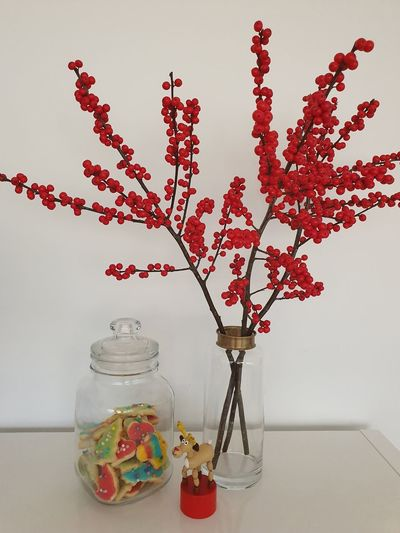 Close-up of red flowers in vase on table against wall