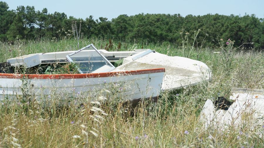 broken and abandoned boats laying in the grass, greece Old Abandoned Boat White Boat Broken Damaged Grass Greece Nea Plagia Tree Water Sky Grass