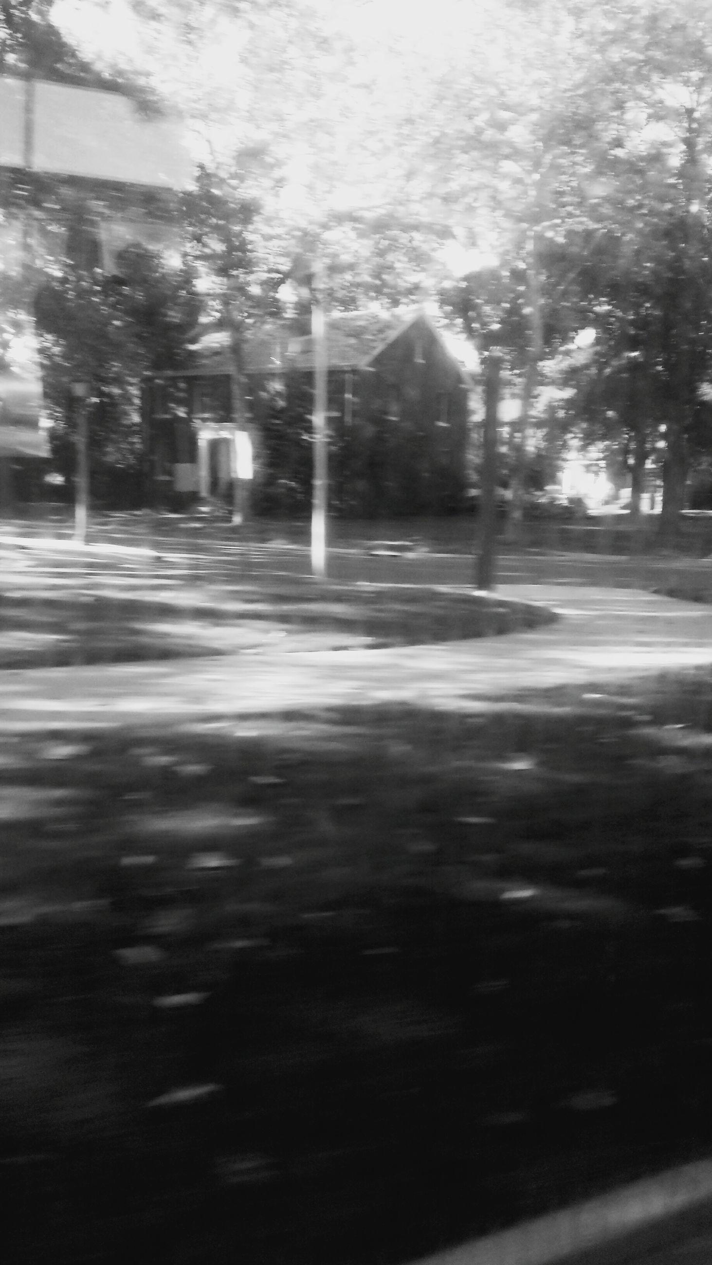 transportation, road, street, the way forward, car, tree, land vehicle, wet, motion, road marking, street light, rain, mode of transport, illuminated, blurred motion, night, on the move, asphalt, speed, outdoors
