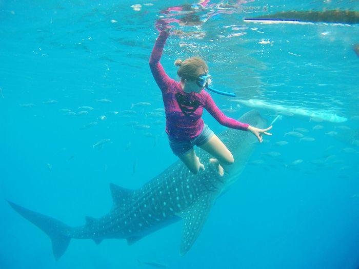 Down down and away SUPERgirl under the sea! That's Me Enjoying Life Oslob Cebu Whalewatching  Whaleshark Feel The Journey Hello World IvyEntures2016