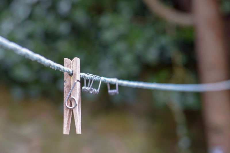 Close-up of clothespin on clothesline against tree