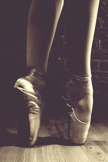 Alternative Fitness ballet