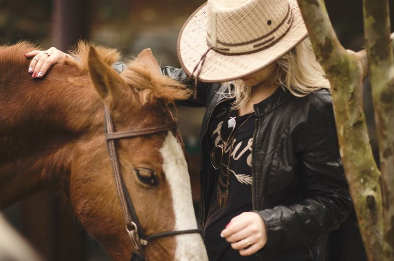 Horse Domestic Animals Livestock Mammal Real People One Animal Animal Themes One Person Day Outdoors Front View Horseback Riding Leisure Activity Nature Pet Portraits