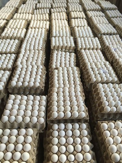 High Angle View Of Eggs In Crate At Poultry Farm