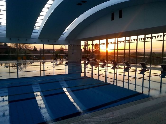 Swimmingpool Water Dawn Of A New Day Swim Swimming Time Sunrise Over Water