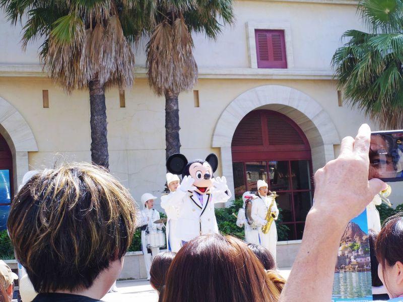 仕事始めたら、写真を撮る機会がとても減ってしまいました笑。お仕事の行き帰りでも撮ろうと思えば撮れるし、家の中でも撮ろうと思えば撮れるけど笑。撮りたいというより、どこかへ行きたいんだろうな✈️🌴🌅 Disney Mickey Mouse Tokyo Disney Sea Enjoying Life