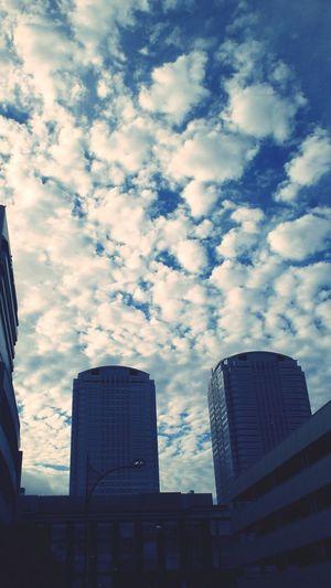 秋の空 sky Autumnsky Makuhari
