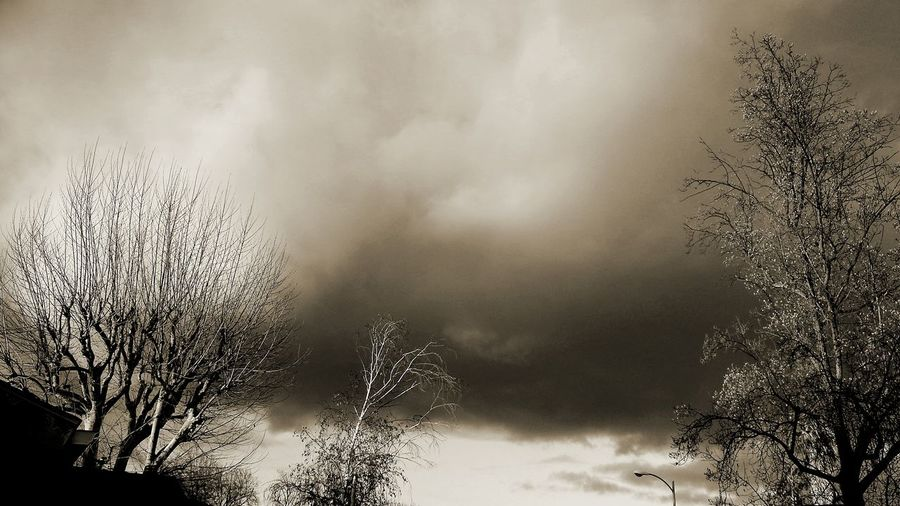 Outside Photography Storm Coming Nature Tree And Sky Gloomy Day Weather Photography Approaching Storm Clouds Cold Outside Ominous Beauty Gloomy Weather Stormy Sky Playing With Filters Sepiatone Learn & Shoot: Balancing Elements Being Creative Being Artistic