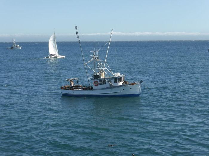 Day Fishing Boat Nautical Vessel No People Ocean Outdoors Sailboat Sailing Sailing Ship Sea Sea And Sky Transportation Water Yacht Yachting