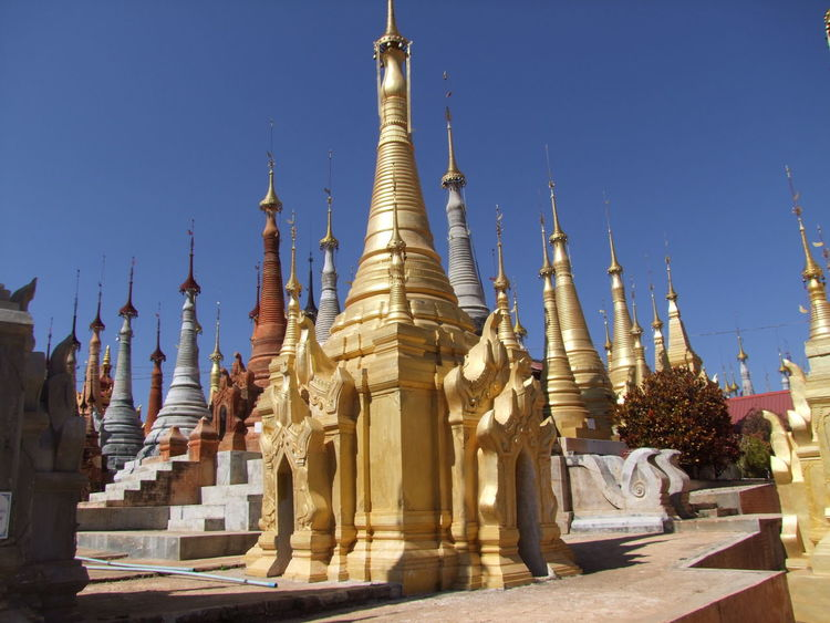 Rebuilt Stupas Blue Sky Buddhism Buddhist Architecture Buddist Stupas Composition Flowering Bush Full Frame Gold Colour Inle Lake Kakku Myanmar No People Outdoor Photography Place Of Prayer Place Of Worship Religion Religious Sites Shan State Side By Side Stupas Sunlight And Shadows Tourism Tourist Attraction  Tourist Destination Unusual