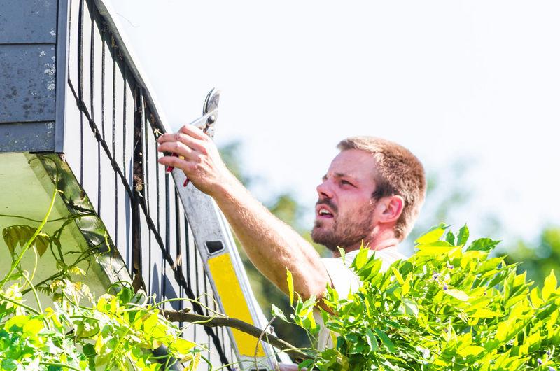 Man trimming plants at back yard