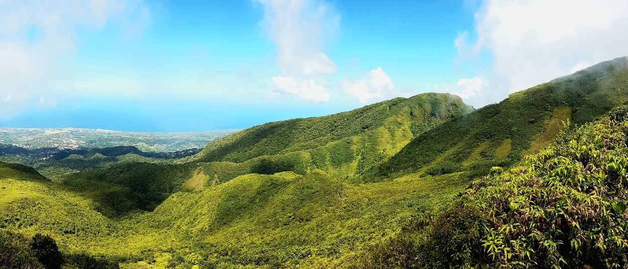 Cloud - Sky Mountain Nature Landscape Sky Forest Tree Outdoors Beauty In Nature Soufriere Green No People Gwada  Gwadeloupe Guadeloupe