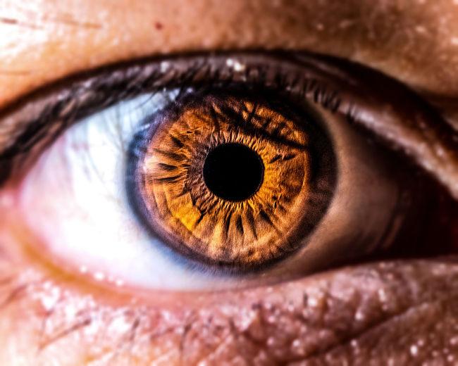 Eyeball Eyelash Eyesight Human Eye Portrait Iris - Eye Sensory Perception Looking At Camera Close-up Eyebrow Eyeliner Lip Gloss Eyeshadow Ceremonial Make-up Iris Human Nose Face Powder Stage Make-up Hazel Eyes  Vision Blush - Make-up Eyelid Lipstick Full Frame Make-up Brush