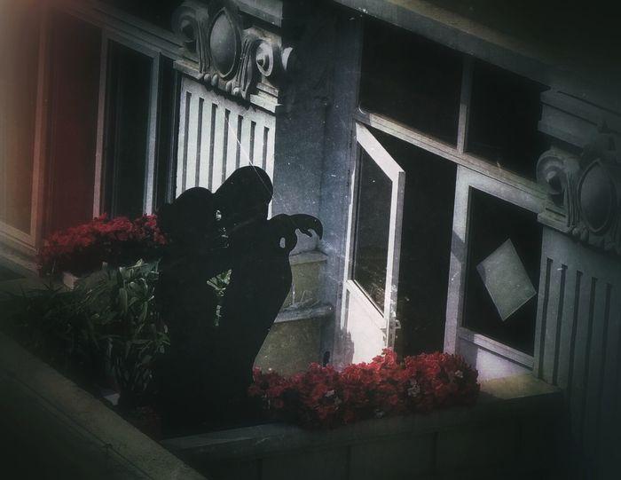 China Photos Neighbor Balcony Romance Display