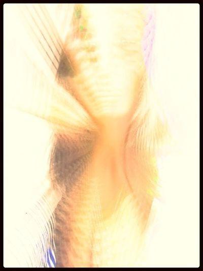 The God Syndrome NEM Self MI ALMA QUE ESTALLA~ MY SOUL EXPLODES