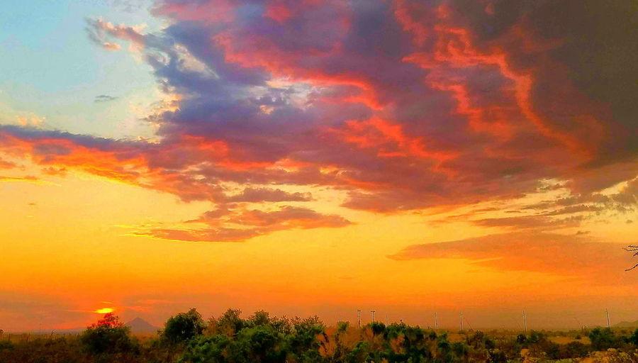 Sunset Dramatic Sky Orange Color Cloud - Sky Sunbeam Tree Sun Sky Multi Colored Scenics Nature Tranquility Outdoors Landscape No People Beauty In Nature
