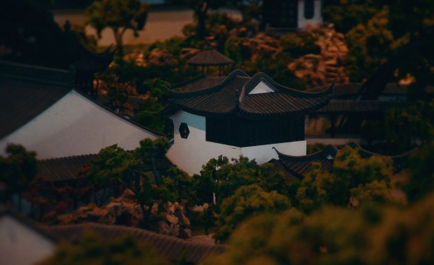 This is a small detail of microscale model of Suzhou Traditional Garden which is the best east traditional garden in the world in Suzhou Traditional Garden Museum.The art of garden is a part of Chinese traditional art. Chinese Traditional Building Chinese Traditional Culture Museum Night Architecture Built Structure Building Exterior Tree Nature No People Sky Roof Model SuzhouGarden Chinese Style
