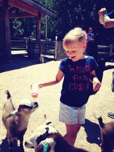 Feeding the baby goats ❤️