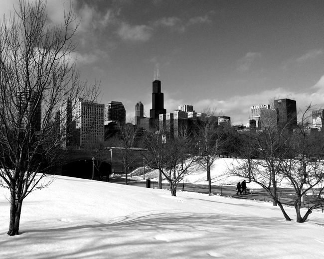 Chicago in Winter ❄ Selected For Premium Travel Travelphotography Travel Photography Chicago Chicago Architecture Chicago Skyline Blackandwhite Black And White Black & White Blackandwhite Photography Black And White Photography Snow Cold Temperature Winter City Tree Sky Architecture Urban Skyline Skyscraper Skyline Cityscape Downtown
