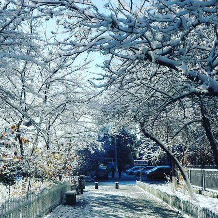 after snow 乌鲁木齐