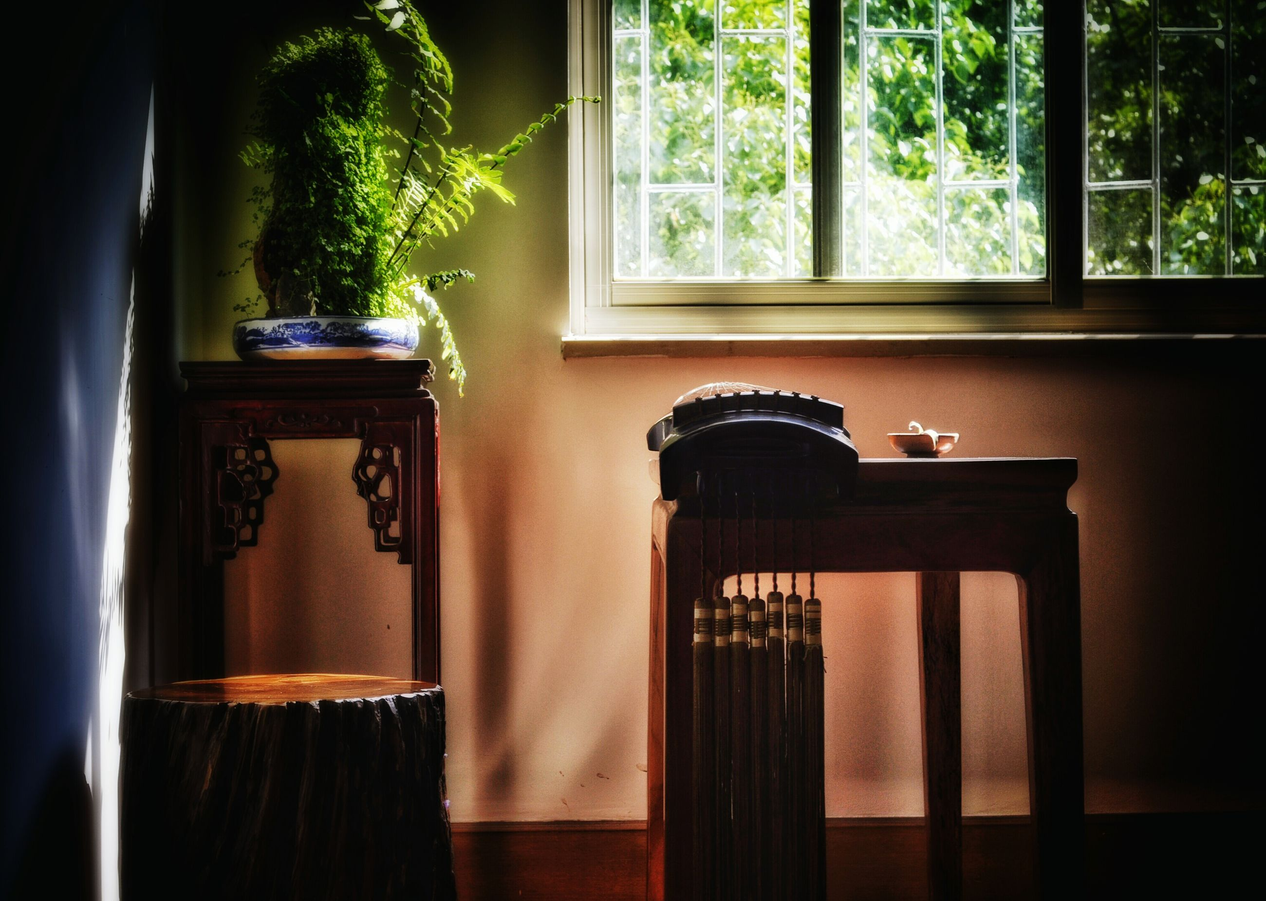 window, indoors, tree, house, door, home interior, built structure, glass - material, closed, potted plant, growth, architecture, window sill, open, plant, wood - material, curtain, entrance, day, transparent