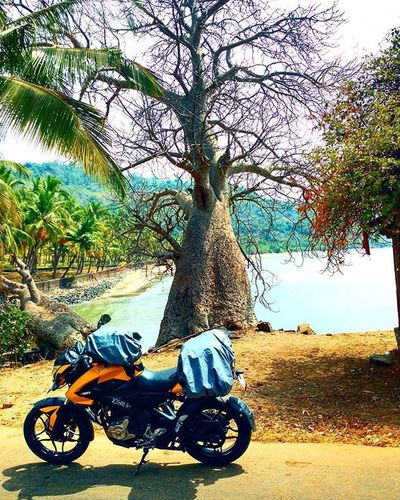 Onelifetotravel Lifeontwowheels IgnitingSparkPlug Notallthosewhowanderarelost SoloTraveller 25thYear25Places MotoNomad KonkanCoastline Travel Traveldairies OnTwoWheels Pulsar 200ns ViaTerra Offroading Motorola Motoxplay Nature