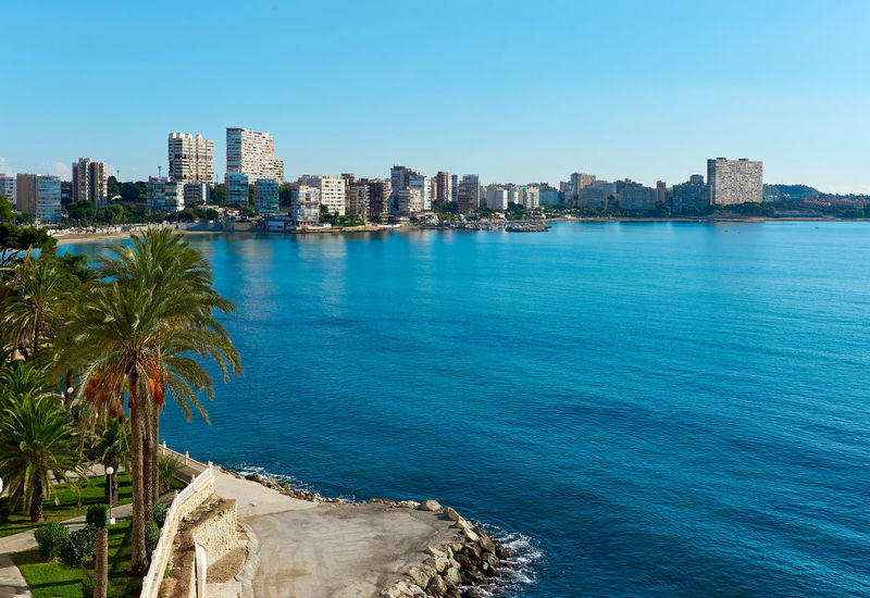 View to the skyline of Albufereta at sunny winter day. Costa Blanca, Alicante. Spain Albufereta Alicante, Spain Architecture Bay Building Exterior Cityscape Clear Sky Coast Coastline Costa Blanca Highrise Landscape Mediterranean Sea Outdoors Palm Trees Scyscrapers Seaside SPAIN Sunny Tourist Resort Travel Destinations Urban Skyline Waterfall