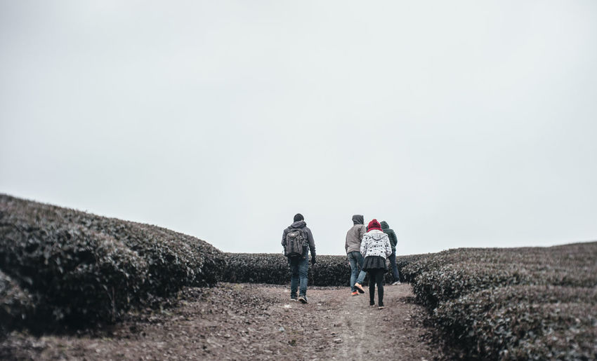 Friends Hills