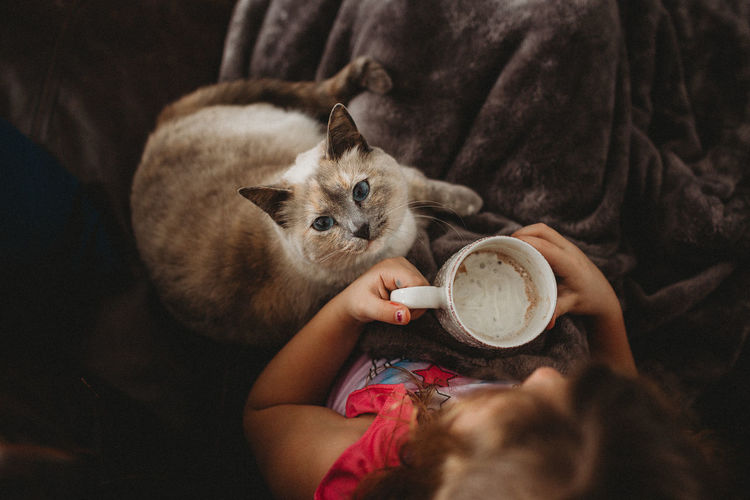 Directly above shot of girl holding mug with cat at home