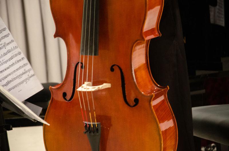 Close-Up Of Violin