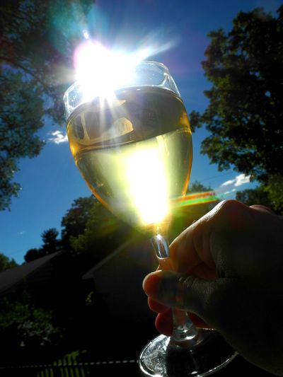 A cool glass of white wine on a hot summer day. Sunbeam Sun Lens Flare Sunlight Tree Holding Close-up Outdoors Shining Bright Sunny Sky Glass Wine Wineglass Wine Tasting Booze Finger Lakes Finger Lakes Of Western NY Pino Grigio Chardonnay Reisling Person Day Drink