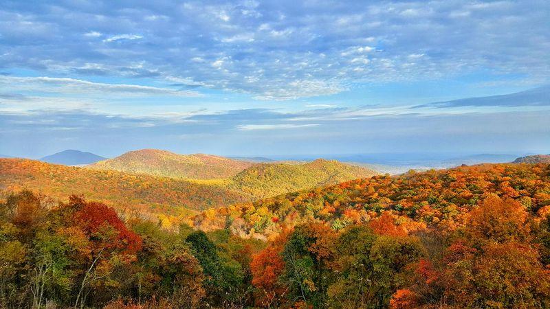 Skyline Drive Shenandoah National Park Fall Colors Serenity Nature Art Samsung Galaxy S6 Colors Colorful