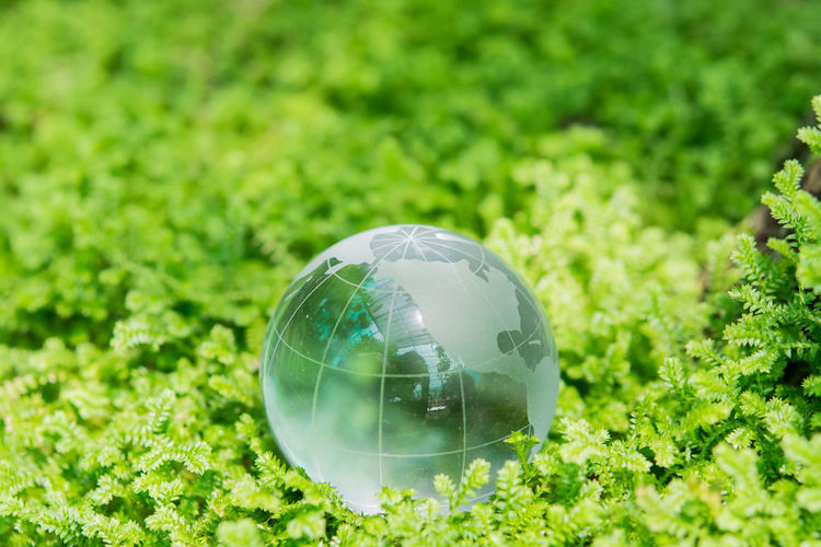 Close-up of glass ball on grass