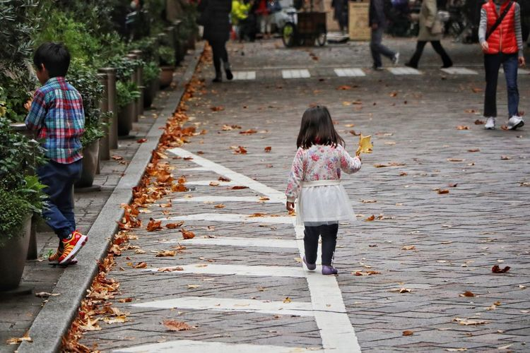 Brother and sister/落穂拾いの兄妹 Full Length Real People Walking Rear View Outdoors Childhood Day People Autumn Leaves Canon EOS M5