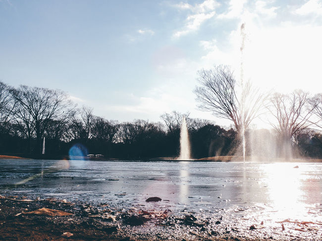 Backlight Beautiful Nature EyeEm Best Shots EyeEm Nature Lover Fountain Glitch Ground It's Cold Outside Lake Lake View Landscape Leaves Light And Shadow Luminous Nature Nature_collection No People Pond Shiny Silhouette Sky Splash Trees Water Winter