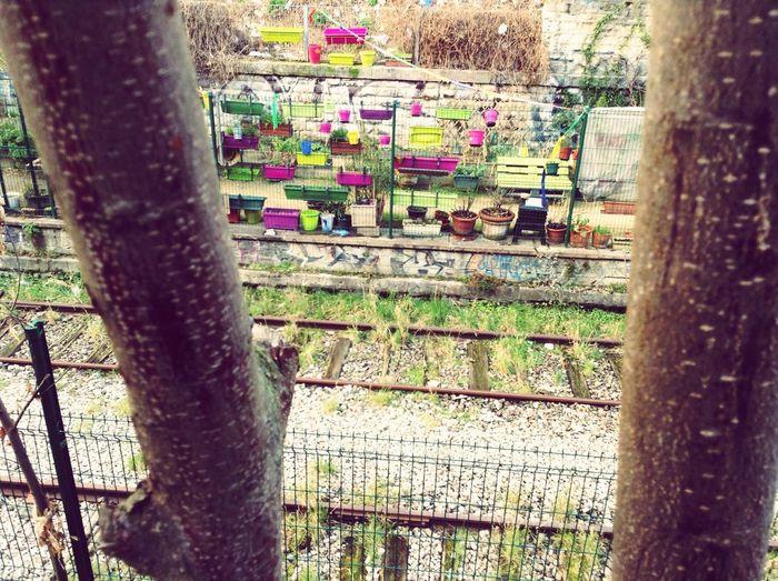 Nature & City