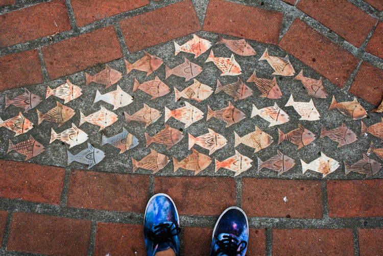 Low Section Of Person Standing By Fish Shape Tiles On Footpath