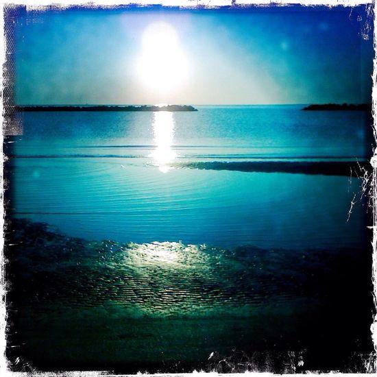 Sea Beach Backlight Sun